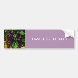 Winery Grapevine sunny tuscany vineyard grapes Bumper Sticker