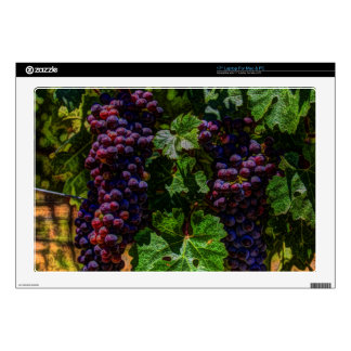 """Winery Grapevine sunny tuscany vineyard grapes Skin For 17"""" Laptop"""