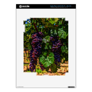 Winery Grapevine sunny tuscany vineyard grapes Skins For iPad 3