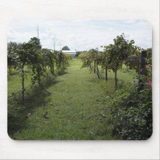 Winery Mousepads