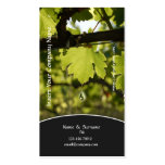 Winery vineyard grape business profile business card