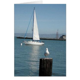 Wing and Sail - San Francisco Bay Card