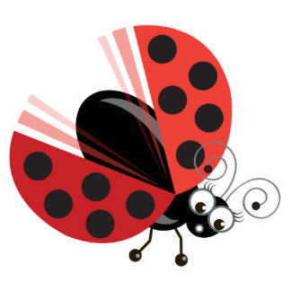 Wing-Nutz™_Ladybug (Dotty)_ sweet  & fun Statuette