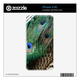Wing Of A Peacock Decals For The iPhone 4S
