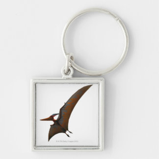 Winged and Toothless Keychain