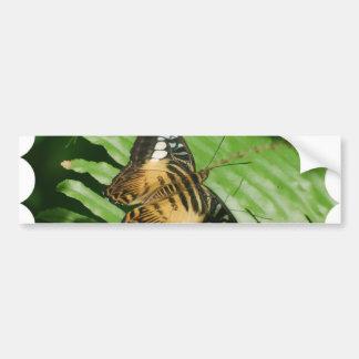 Winged Butterfly Bumper Sticker