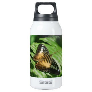 Winged Butterfly Insulated Water Bottle
