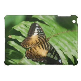 Winged Butterfly iPad Mini Case