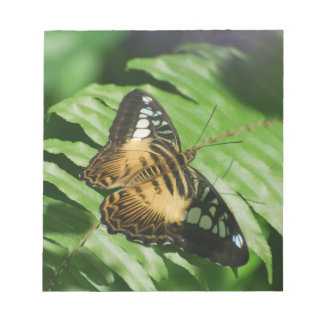 Winged Butterfly Notepad