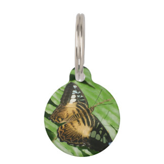 Winged Butterfly Pet Name Tag