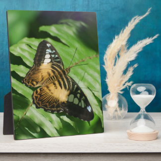 Winged Butterfly Plaque