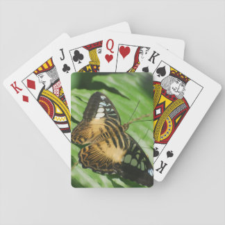 Winged Butterfly Poker Cards