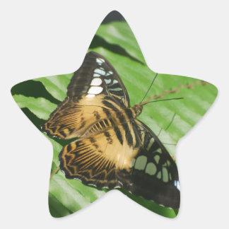 Winged Butterfly Star Sticker