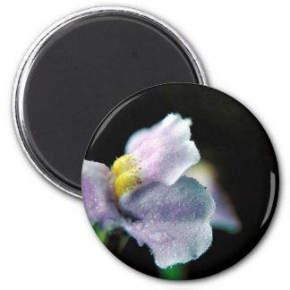 Winged Monkey Flower 2 Inch Round Magnet