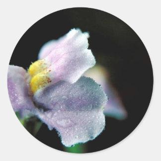 Winged Monkey Flower Classic Round Sticker