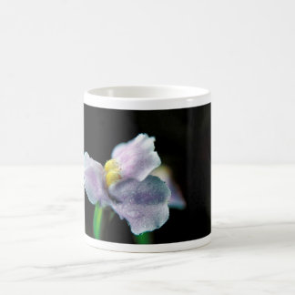 Winged Monkey Flower Classic White Coffee Mug