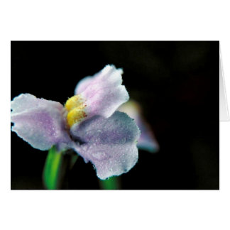 Winged Monkey Flower Greeting Card