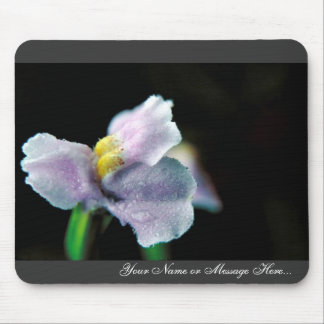 Winged Monkey Flower Mouse Pad