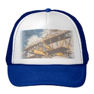 Wings Aloft hat