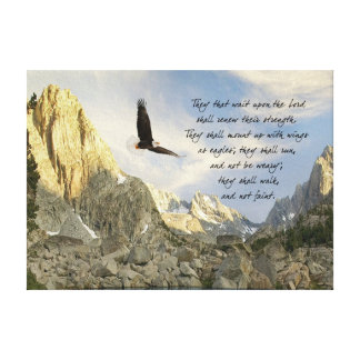 Wings As Eagles Isaiah 4o Canvas Print