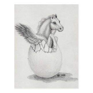 'Wings' Baby Pegasus, Flying Horse Collection Postcard