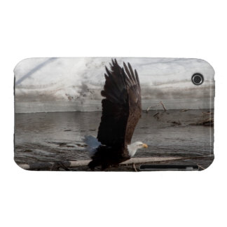 Wings Extended Bald Eagle Case-Mate iPhone 3 Case