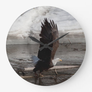 Wings Extended Bald Eagle Large Clock