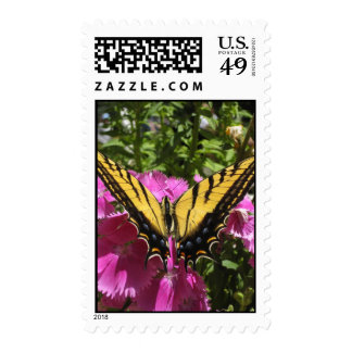 Wings of Beauty (10) Postage Stamps