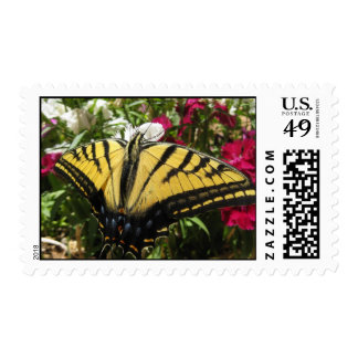 Wings of Beauty (11) Postage Stamps