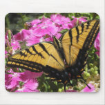 Wings of Beauty (2) Mouse Pad