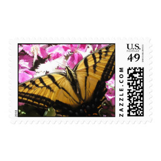 Wings of Beauty (3) Postage Stamps