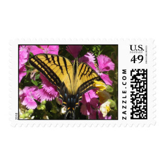 Wings of Beauty (4) Postage Stamps