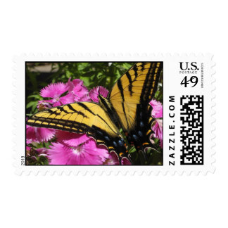 Wings of Beauty (7) Postage Stamps