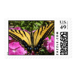 Wings of Beauty (8) Postage Stamps