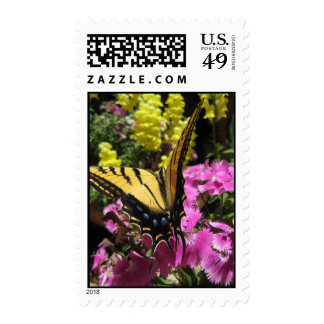 Wings of Beauty (9) Postage Stamps