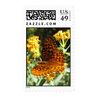Wings of Curiosity (2) Postage Stamps