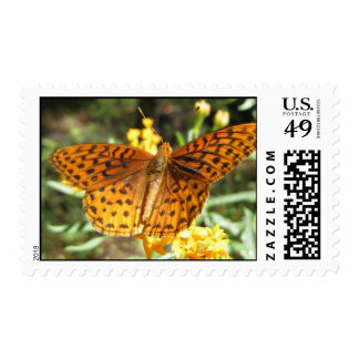 Wings of Curiosity (3) Postage Stamps