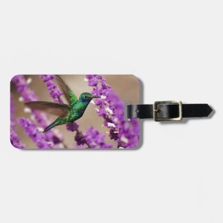 Wings of Faith Sparkling Violet-ears Hummingbird Bag Tag