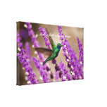 Wings of Faith Sparkling Violet-ears Hummingbird Gallery Wrap Canvas