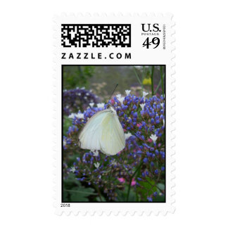 Wings of Grace (2) Postage Stamps