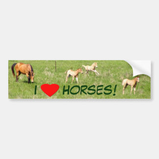Wings of May: Horses Bumper Stickers