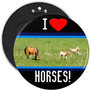 Wings of May: Horses Button