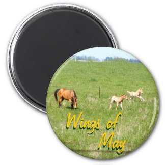 Wings of May: Horses Magnets