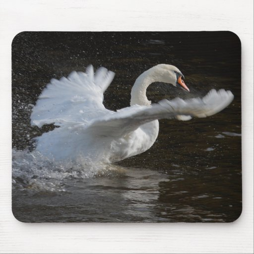 Wings Outstretched Swan Mouse Pad