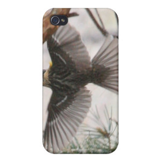 Wings Spread 4/4s Case For iPhone 4