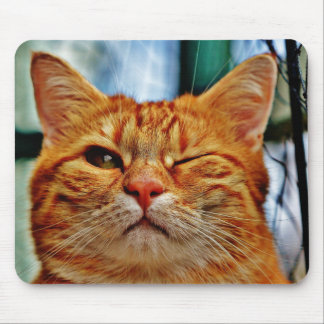 Wink kitty mouse pad