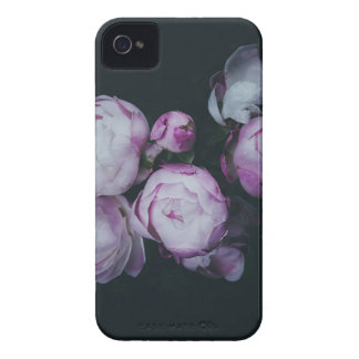 Wink Rose Buds dark background iPhone 4 Case