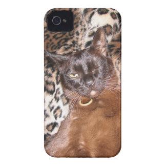 Winking Burmese Case-Mate Case iPhone 4 Case