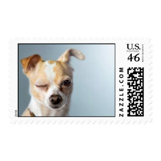 Winking Dog stamp