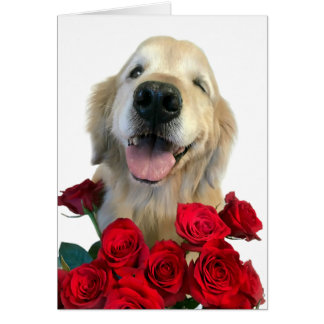Winking Golden Retriever With Roses Mother's Day Card